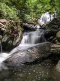 Падения Catawba в национальный лес Pisgah стоковые фотографии rf