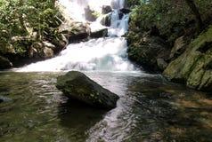 Падения Catawba в национальный лес Pisgah стоковая фотография