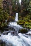 Падения Toketee, национальный лес Umpqua, Орегон стоковое фото rf