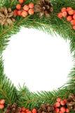 падуб рамок рождества ягоды Стоковая Фотография