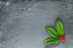 Падуб с ягодами на темном камне Стоковые Изображения