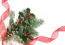 падуб украшений рождества ягод Стоковое Изображение RF