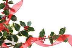 падуб украшений рождества ягод Стоковая Фотография