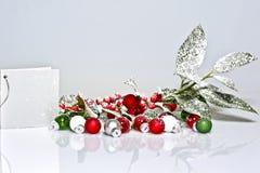 падуб ягоды представляет снежное Стоковая Фотография RF