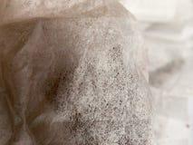 Пакетики чая закрывают вверх по белому и черному материалу напряжения ткани стоковое изображение rf
