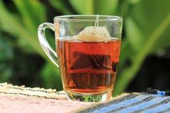 Пакетики чая на траве стоковое изображение