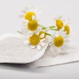 Пакетики чая стоцвета Стоковая Фотография RF