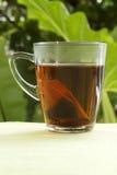 Пакетики чая с чашками стоковые изображения rf