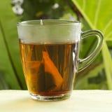 Пакетики чая с чашками стоковое фото