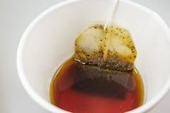 Пакетик чая в бумажном стаканчике и горячей воде стоковая фотография