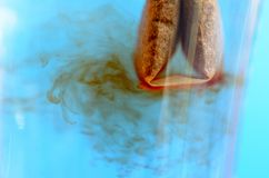Пакетик чая в стеклянной кружке с концом-вверх горячей воды стоковое изображение