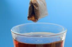 Пакетик чая над стеклянной кружкой с концом-вверх горячей воды на голубой предпосылке стоковая фотография rf