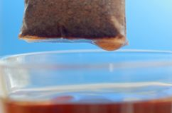 Пакетик чая над стеклянной кружкой с концом-вверх горячей воды на голубой предпосылке стоковые изображения