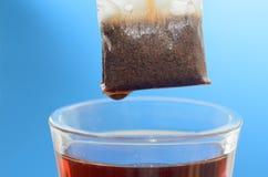 Пакетик чая над стеклянной кружкой с концом-вверх горячей воды на голубой предпосылке стоковое изображение rf