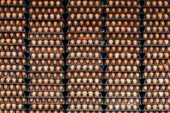 Пакеты яичка, картины Стоковые Фото