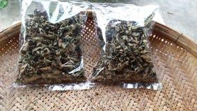 Пакет лист зеленого чая для costomer Стоковое Фото