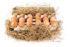 пакет яичек Стоковое Фото
