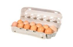 пакет яичка цыпленка Стоковое Фото