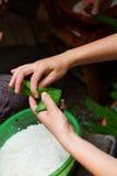 Пакет dumplings-5 фестиваля шлюпки дракона Стоковые Изображения