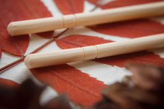 Паковать: комплект китайских ручек, ветвей зола горы и конусов леса Стоковые Фотографии RF