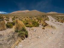 Пакостная дорога в боливийских гористых местностях Стоковые Фотографии RF