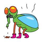 пакостная муха Стоковое фото RF
