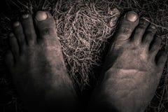Пакостная нога Стоковое Изображение RF