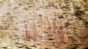 Пакостная предпосылка grunge с белыми точками Стоковое Изображение