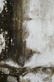 Пакостная стена цемента Стоковое Изображение