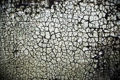 пакостная grungy стена Стоковая Фотография