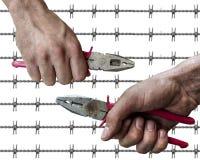 Пакостное владение руки рабочего класса plierspincer на обоих сторона изолированная на предпосылке провода колючки Стоковые Фото