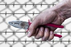 Пакостное владение руки рабочего класса plierspincer на предпосылке провода колючки Стоковые Изображения