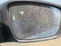 Пакостное зеркало автомобиля стоковое фото rf