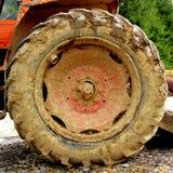 пакостное колесо Стоковые Изображения RF