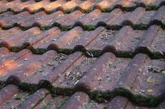 Пакостные крыша и сточная канава стоковое изображение