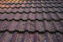 Пакостные крыша и сточная канава стоковое изображение rf
