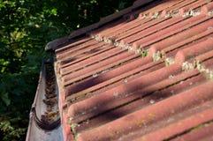 Пакостные крыша и сточная канава стоковые изображения rf