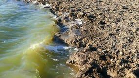 Пакостные поток и загрязнение окружающей среды сточных водов, сток-видео