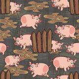 Пакостные свиньи на темноте - сером цвете Стоковое Фото