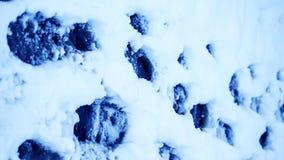 Пакостные следы ноги в зиме снега След от ботинок на tra Стоковые Фотографии RF