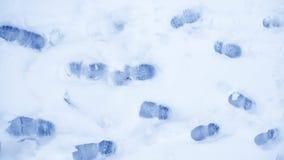 Пакостные следы ноги в зиме снега След от ботинок на tra Стоковое Фото