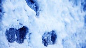 Пакостные следы ноги в зиме снега След от ботинок на tra Стоковая Фотография