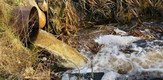 Пакостные сточные воды сливают в чистый поток леса стоковые изображения rf
