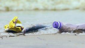 Пакостный берег океана с мертвыми рыбами, волнами выбирая вверх твердые частицы и сор, экологичность