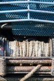 Пакостный ворот на автомобиле стоковые изображения rf