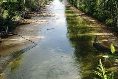 Пакостный канал с коричневой водой стоковые фотографии rf
