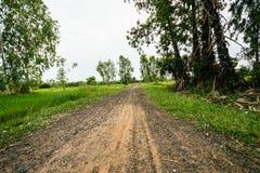 Пакостный путь дороги обрабатывать землю Стоковая Фотография RF