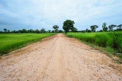 Пакостный путь дороги обрабатывать землю Стоковые Фото