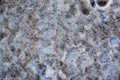 Пакостный серый снег Стоковые Фото