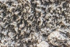Пакостный снег, текстура или предпосылка Стоковая Фотография